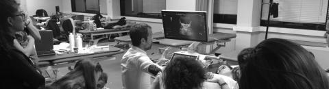 CURSO FISIOTERAPIA EN UROGINECOLOGÍA Y OBSTETRICIA: disfunciones pelviperineales